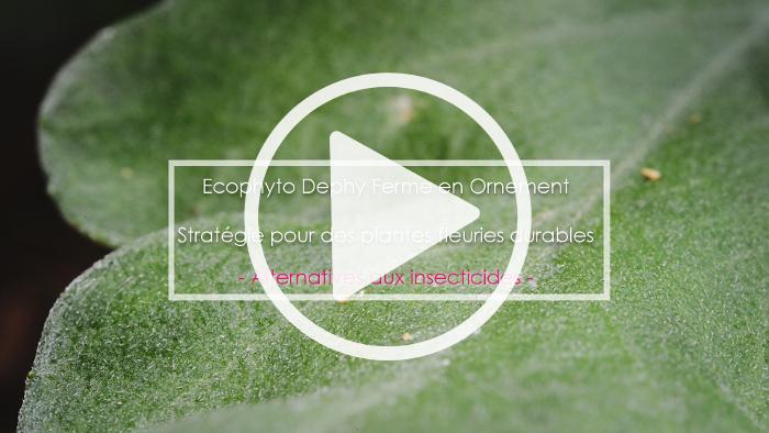 Vidéo horticulture et agriculture à Bordeaux par le studio des 2 prairies : interviews et reportage