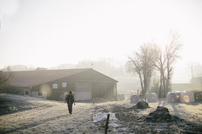 Photogrraphie professionnelle de paysages agricoles