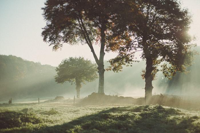 Photographe pour paysages ruraux, campagne, foret