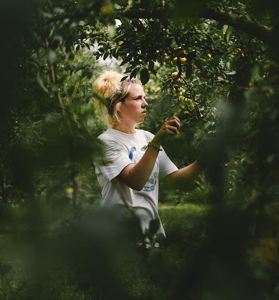 photographe et vidéaste agriculture - Alice Bertrand et Eve Lancery, Le Studio des 2 Prairies
