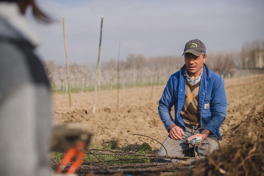 Reportage photo du Studio des 2 Prairies pour la FNPF, en arboriculture