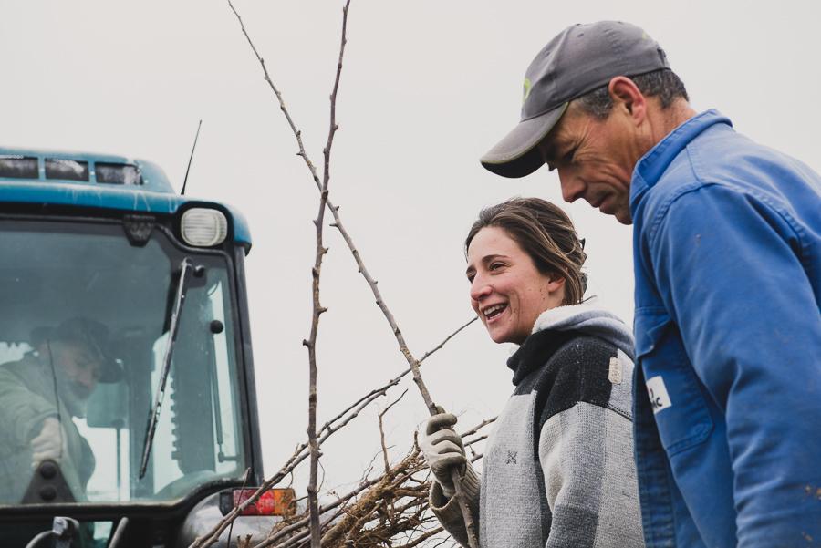 Reportage arboriculture, Photographes agricoles en Rhône Alpes - Studio des 2 Prairies