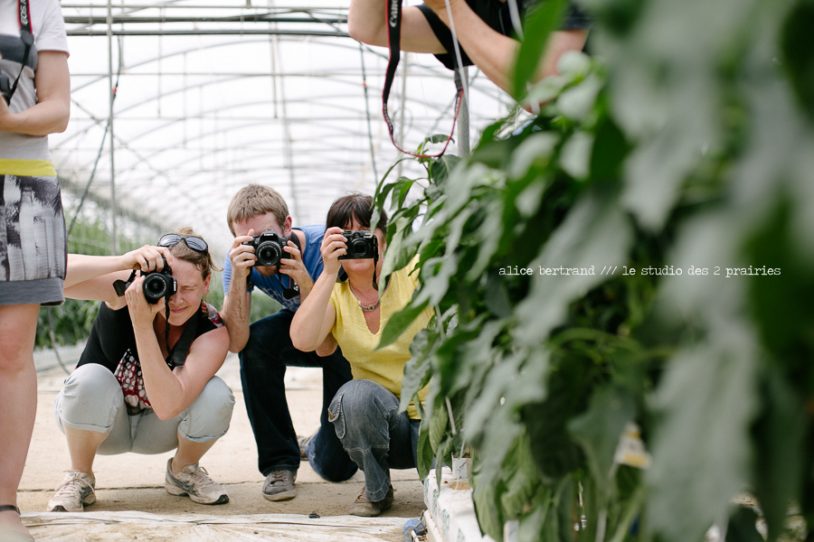 formation journalistes photographie agriculture