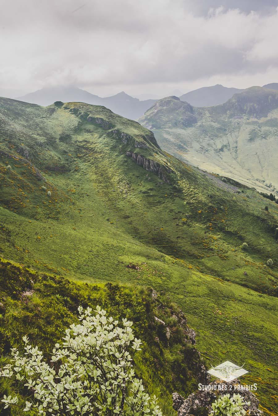 Les 7 fontaines - photos paysages Mont du Cantal - Parc des Volcans d'Auvergne