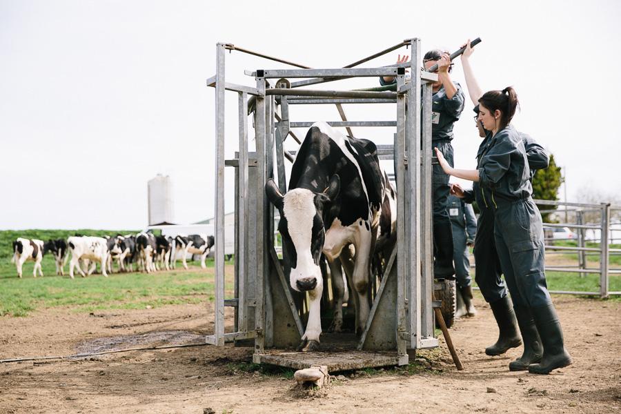 étudiants en lycée agricole