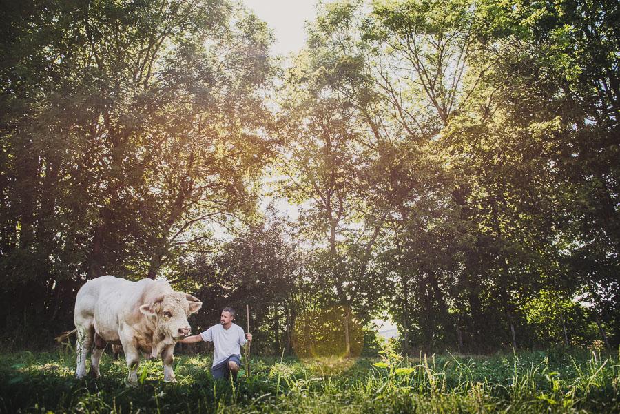 Photographe en agriculture : reportage photo eleveurs en Isère