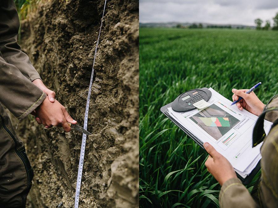 étude sol agronomie