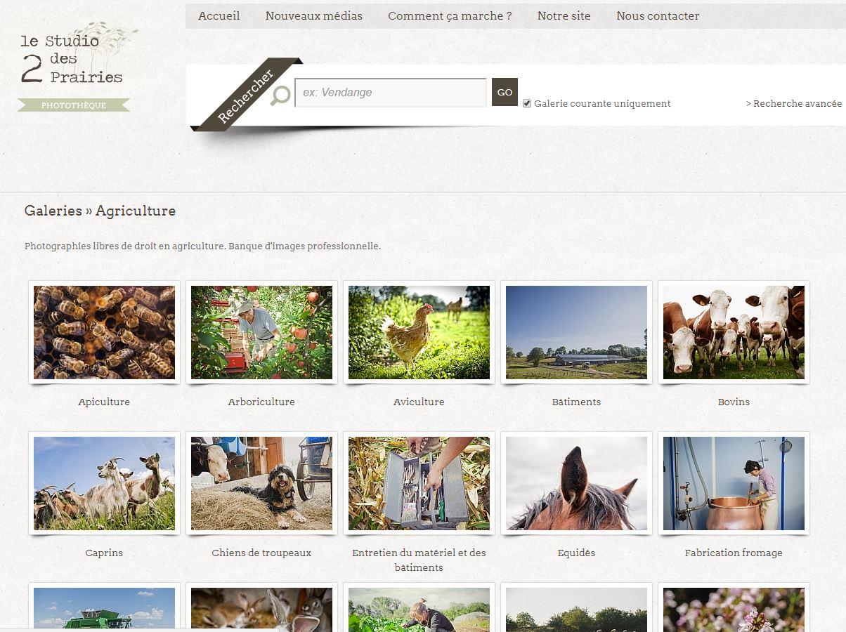 Banque d'images - Photographies agriculture libres de droit