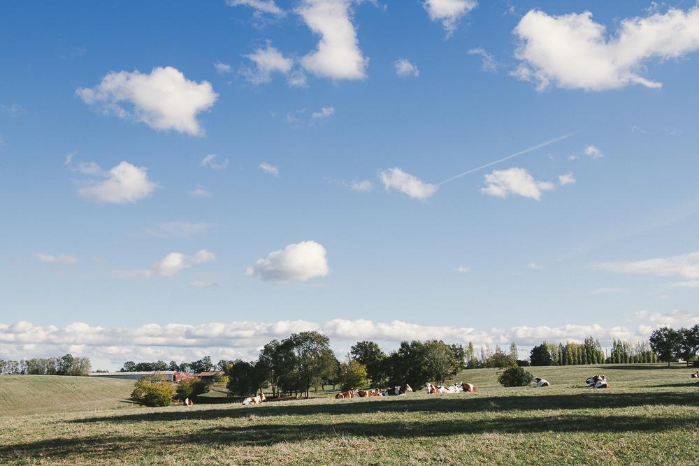 Reportage photo en agriculture par les photographes professionnelles du Studio des 2 Prairies