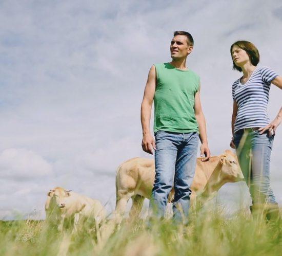 Réalisation de vidéos en agriculture