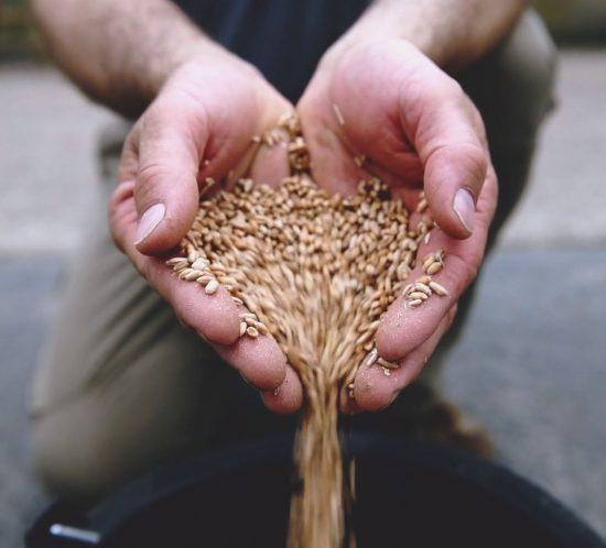 Réalisation d'une vidéo institutionnelle pour le manifeste de la coopération agricole