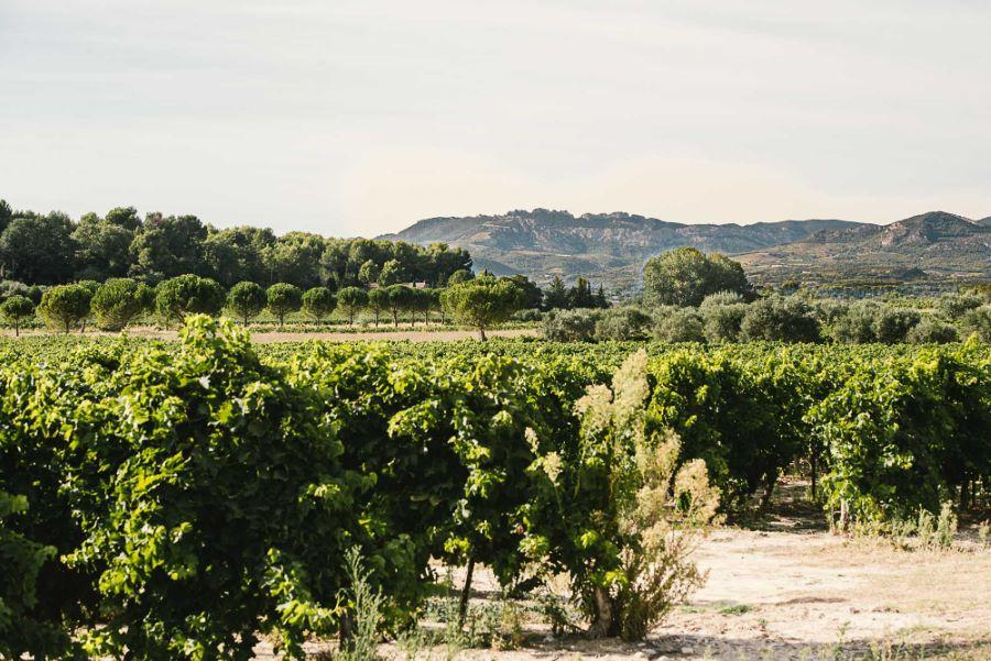 Photographe paysage agricole France ©Studio des 2 Prairies