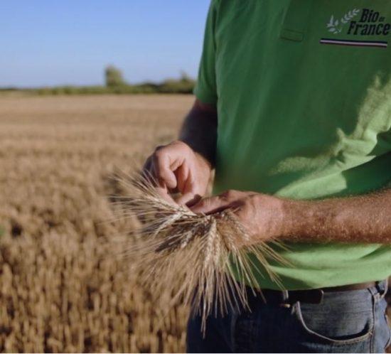 Réalisation de vidéo promotionnelle agriculture pour la gamme Bio de France d'Alpina Savoie - ©Studio des 2 Prairies