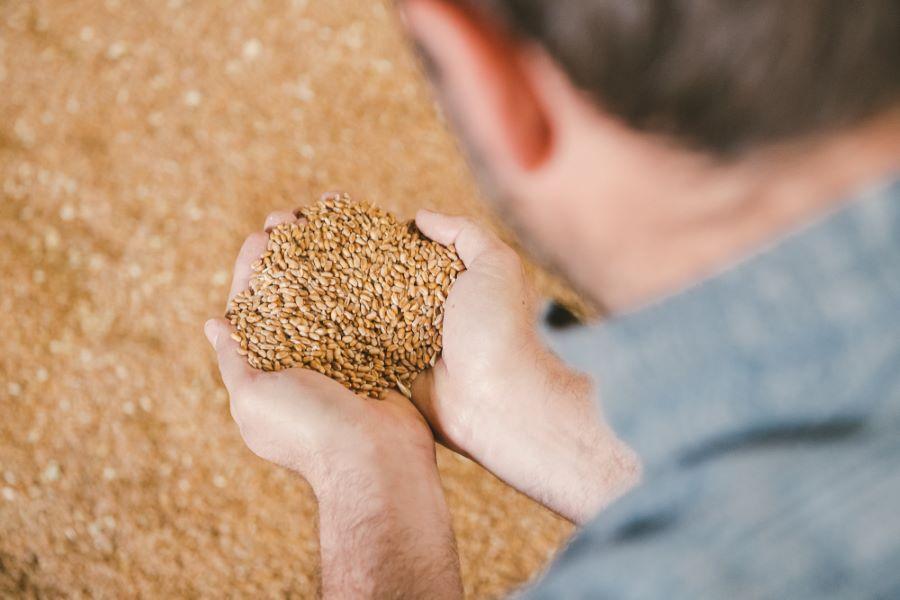 Portrait photo d'un éleveur céréalier de la Marne ©Studio des 2 Prairies