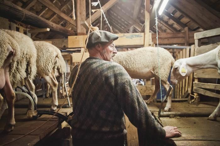 Portrait photo par photographe professionnelle en agriculture, artisanat, gastrnomie, corporate