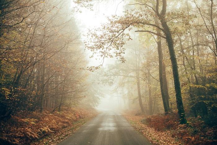 Landscape photographer - countryside
