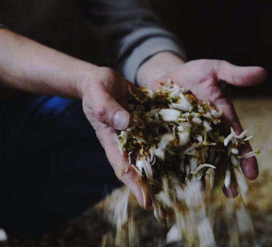 Réalisation d'une vidéo pour la coopérative agricole Nerolium
